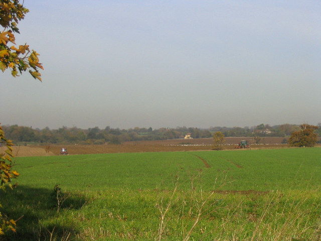 Ploughing, Little Laver, Essex