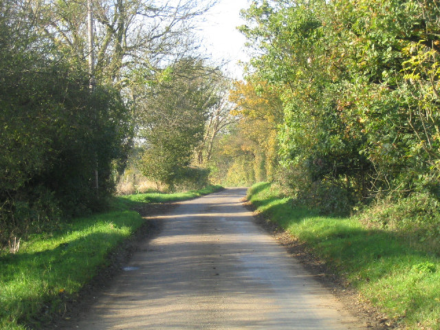 The road to High Laver, Essex