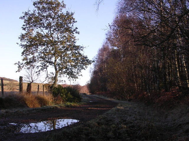 Track parallel to Carnock Burn