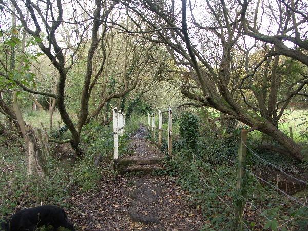 Dark Water Bridge, between Exbury and Langley, Hants.