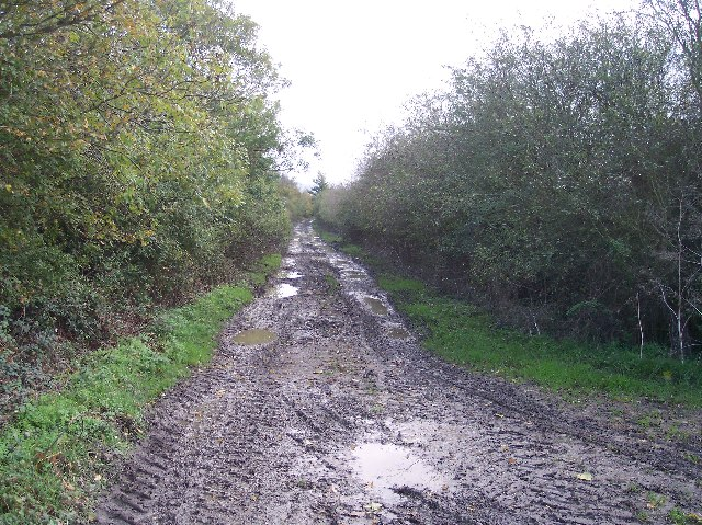 Old Road from Stoke Orchard to Brockhampton