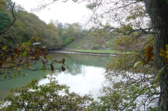 Noss Creek, Long Wood