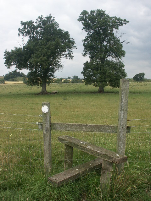 Stile, trees and sheep, Venta Icenorum