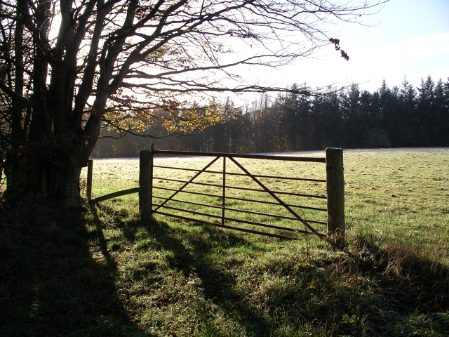 Gate near Whitehaugh Farm