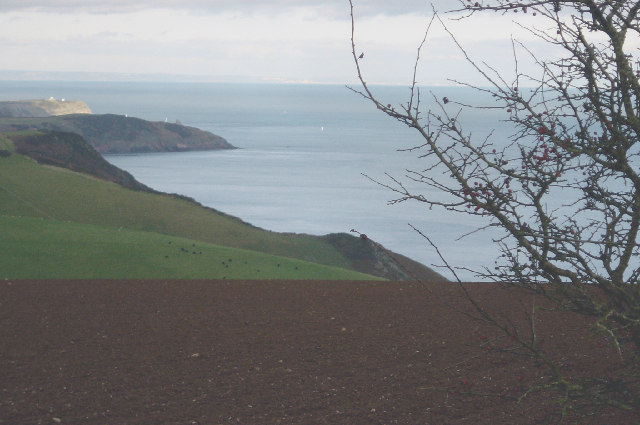 Coastline near Scabbacombe Head