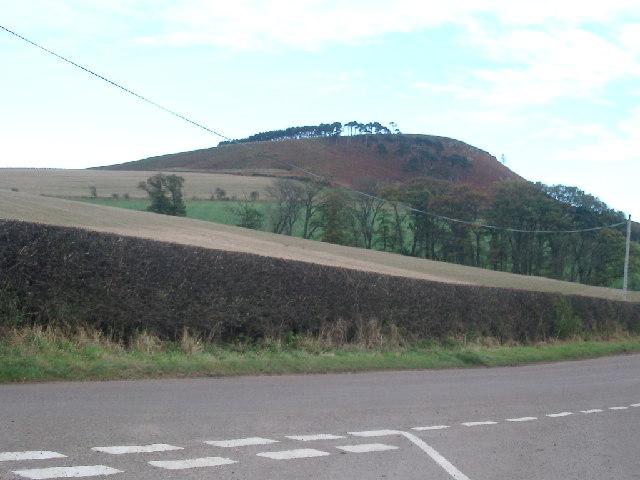 Fields under Hanging Crag, Bewick Hill