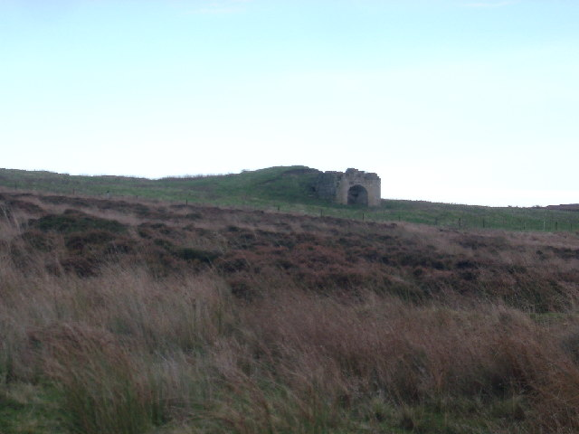 Old Lime kiln, Hepburn Moor nr Chillingham