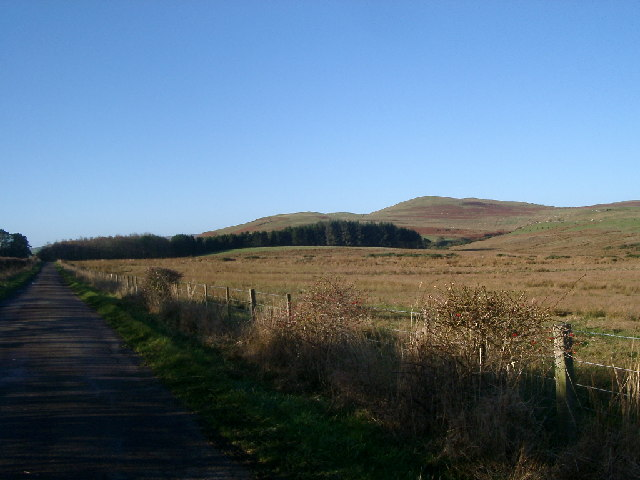 Towards Milemoor Plantation