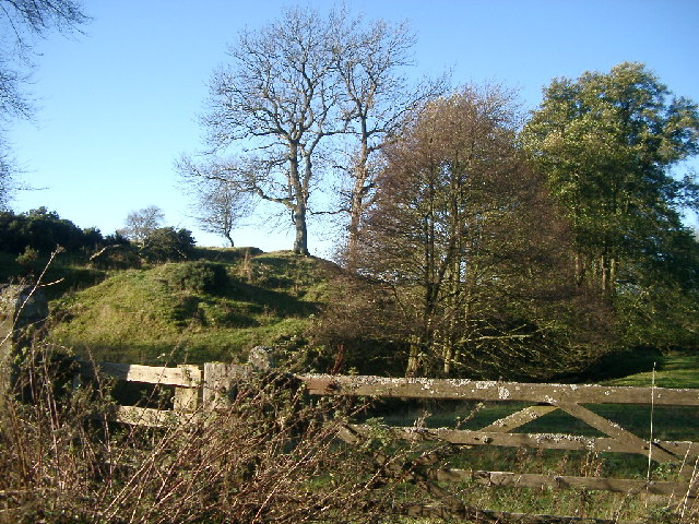 Streambed and hillocks, Lorbottle burn, Lorbottle