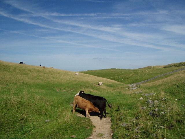 Upper Cavedale, Castleton, Derbyshire