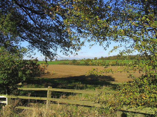A rural view from Nathans Lane, Writtle, Essex