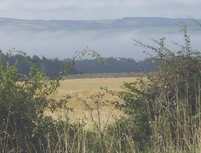 Autumn mist in Tyne Valley from Bearl