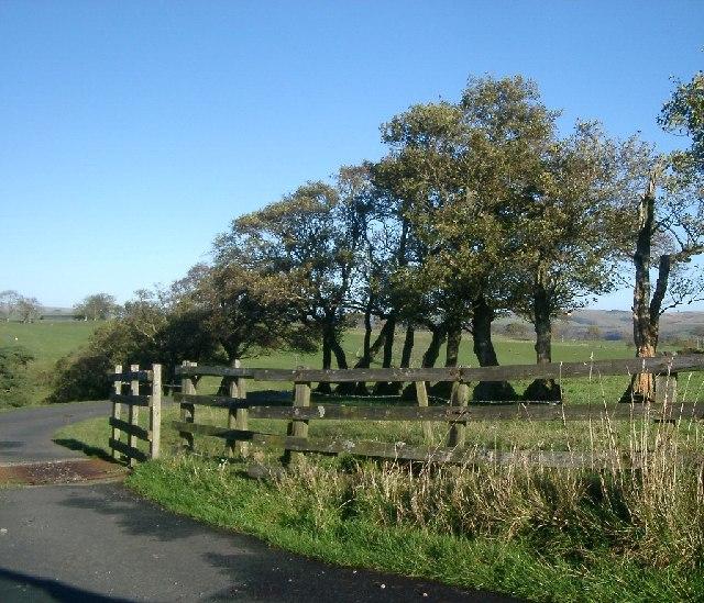 Start of track to Warksfield Head Farm