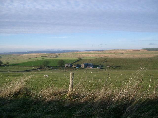 Saughy Rigg Farm