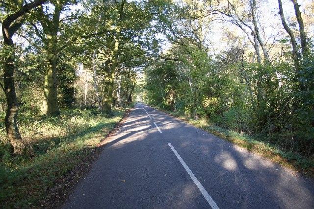 Road Wood