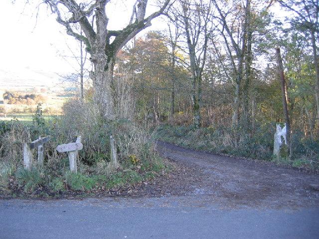 Farm entrance to Whitekeld from roadway.