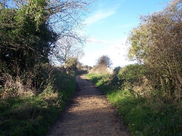 Sabrina Way Crossing Nottingham Hill