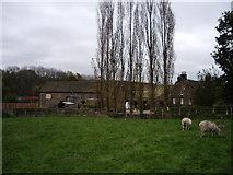 SE3015 : Blacker Hall Farm Shop by Samantha Cheverton