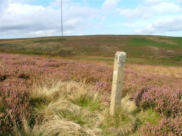 Bilsdale Mast from the South of Fangdale Beck