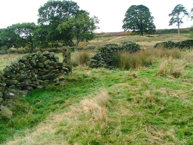 Ruined Wall, Ladhill Gill