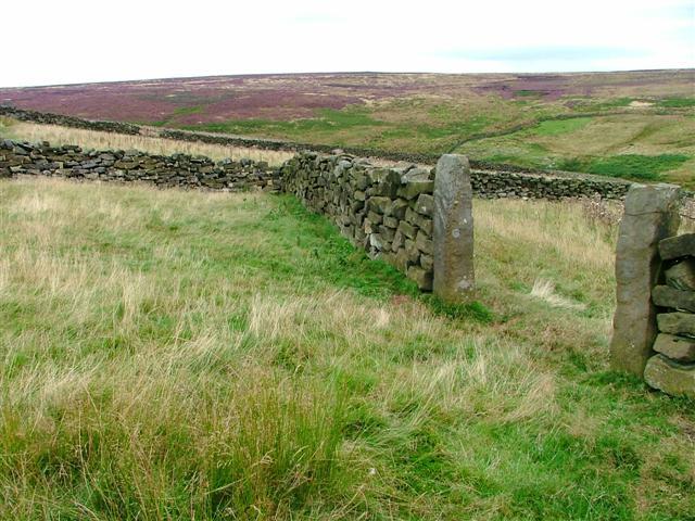 Gate To Sheepfold, Head House, Arnsgill