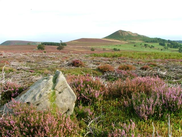Boulder with View to Hawnby Hill
