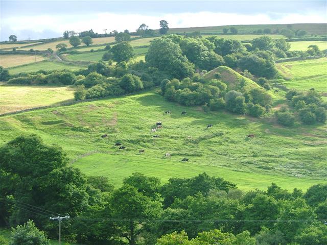 View Across Commondale
