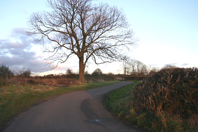 Road between Potter Hill and Scalford