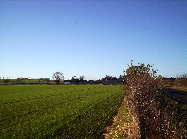 Fields with Pert Farm in the background