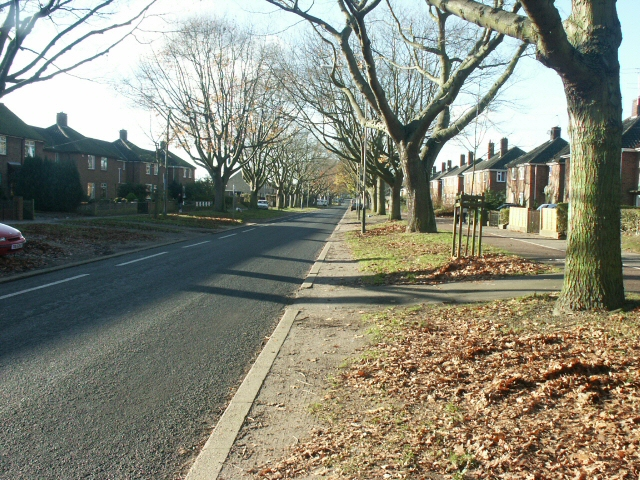 The Avenues, Earlham