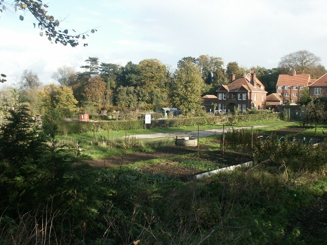 Allotments, Hellesdon