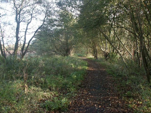 Riverside path, Sweetbriar Road