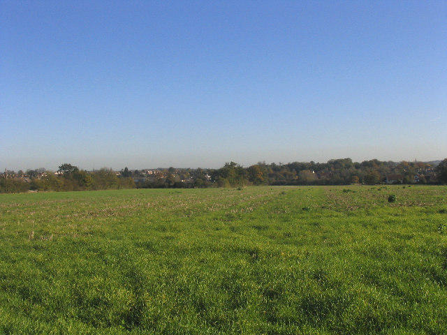 A distant view of Ongar from Greensted