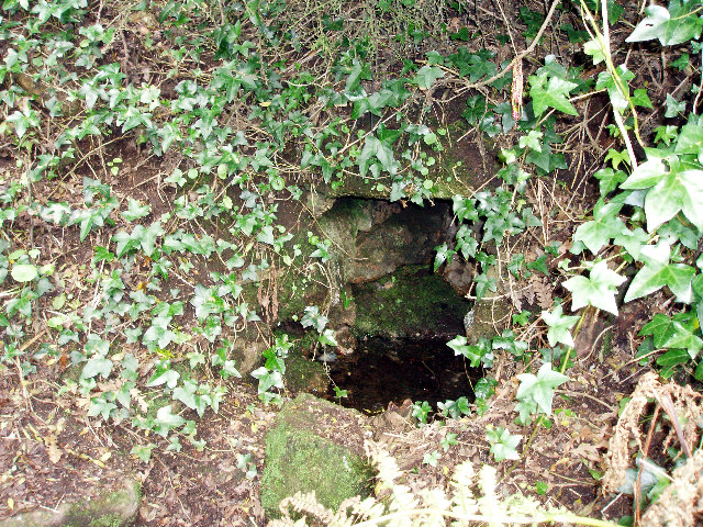 Alsia Holy Well