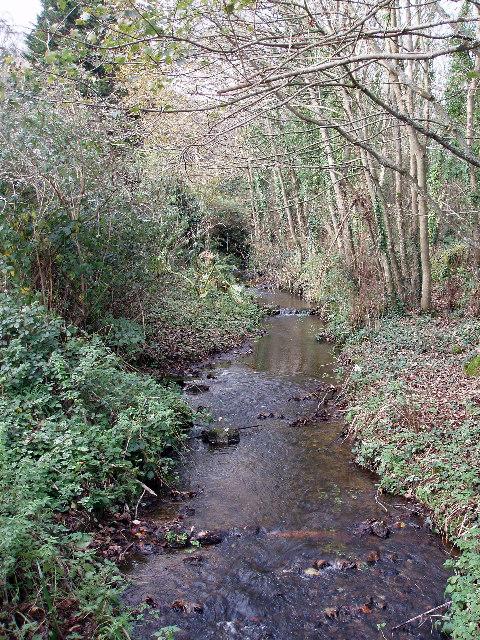 Penberth River at Crean Bottoms
