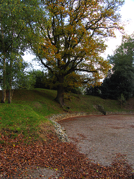 Autumn Leaves at the Amphitheatre at Calleva