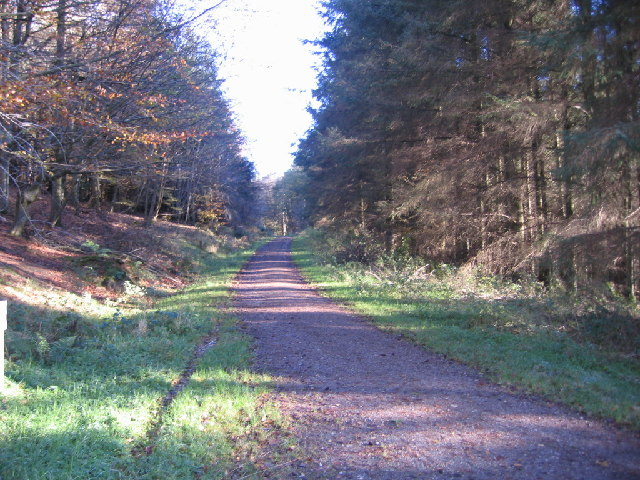 The Setmurthy Common Track