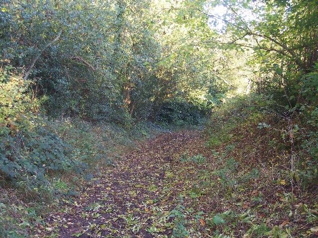 Ham Lane, Powick