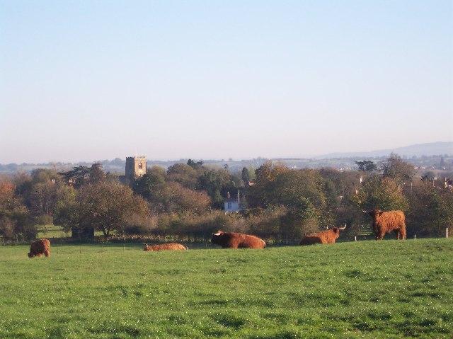 Pasture Land, Powick