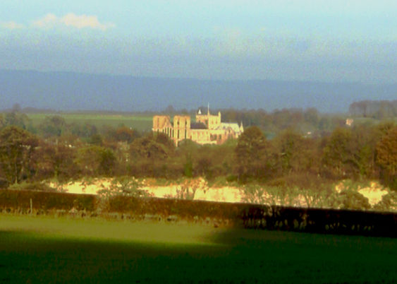 White Cliffs and Mackershaw Woods with Ripon Cathedral behind