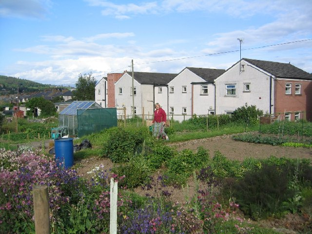Penrith Allotments