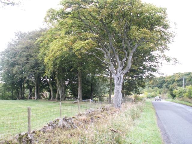 Falfield Junction
