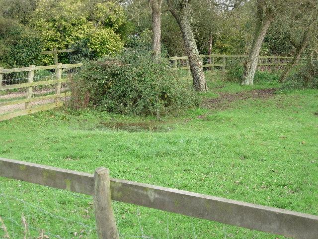 Damp field corner