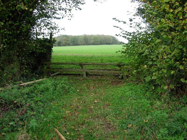 Fox 'Hunting' Hurdle