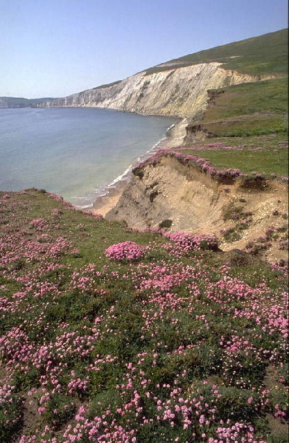 Compton bay cliffs from Compton Chine