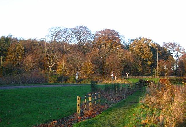 Craigshill Plantation.