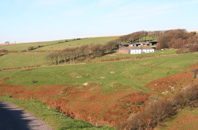 Exmoor: Warren Farm
