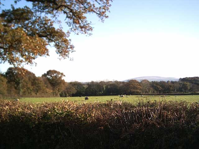 Farmland near  Upcott