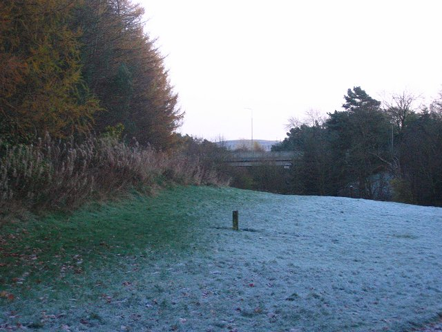 Frost returns.