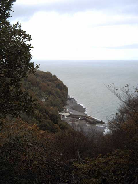 View of Clovelly from the Hobby Drive